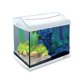 Tetra Akwarium set AquaArt LED białe 20l Akwaria