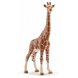 Schleich Samica żyrafy Zwierzęta