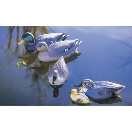 Pontec pływająca kaczka Teal female Products