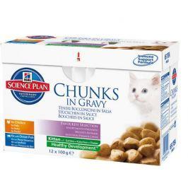 Hill's saszetki dla kociąt Multipack Feline Kitten 12 x 85 g