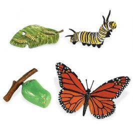 Safari Ltd. Cykl życia - Motyl