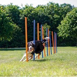 Trixie slalom dla psa, słupki 12 szt.
