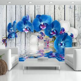 Fototapeta - Kobaltowa orchidea (300x210 cm)