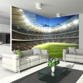 Fototapeta - Stadion (300x210 cm) Fototapety