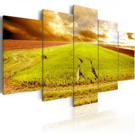 Obraz - Ślady kół na polu (100x50 cm)