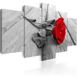 Obraz - Róża na drewnie (100x50 cm) Obrazy i plakaty