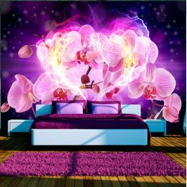 Fototapeta - Orchidee w płomieniach (300x210 cm) Fototapety