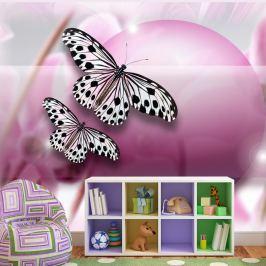 Fototapeta - Fly, Butterfly! (400x270 cm) Fototapety