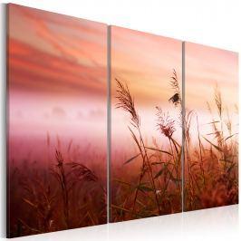 Obraz - Cicha łąka (60x40 cm) Obrazy i plakaty