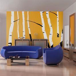 Fototapeta - Birches on the orange background (200x154 cm) Fototapety