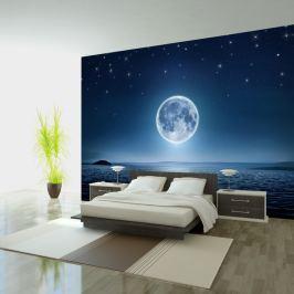Fototapeta - Księżycowa noc (300x210 cm) Fototapety