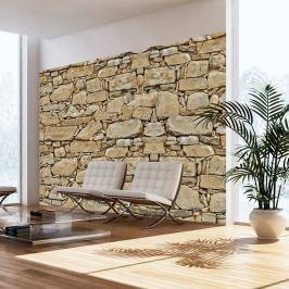 Fototapeta - Kamienna ściana (300x210 cm)