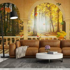 Fototapeta - Sen o jesiennym lesie (450x270 cm)