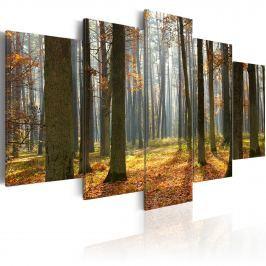 Obraz - Malowniczy krajobraz leśny (100x50 cm)