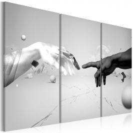 Obraz - Dotyk w czerni i bieli (60x40 cm)