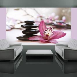 Fototapeta - Relaxation and Wellness (450x270 cm)