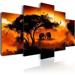 Obraz - Afrykańska miłość (100x50 cm)