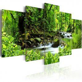 Obraz - In the mighty jungle... (100x50 cm)