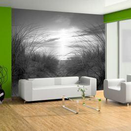 Fototapeta - plaża (czarno-biały) (300x210 cm)
