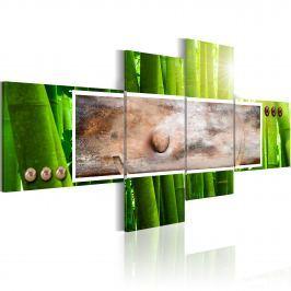 Obraz - Abstrakcja i bambus (100x46 cm)