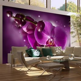 Fototapeta - Baśń i orchidea (450x270 cm)