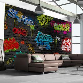 Fototapeta - Graffiti wall (300x210 cm)