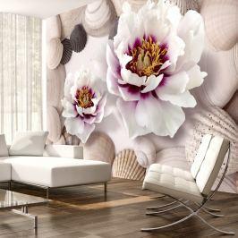 Fototapeta - Kwiaty i muszle (300x210 cm)