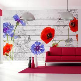 Fototapeta - Polne kwiaty (300x210 cm)