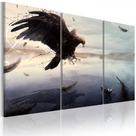 Obraz - Orzeł nad taflą jeziora (60x40 cm)