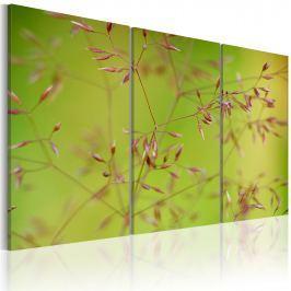 Obraz - Drobniutkie kwiatuszki (60x40 cm)