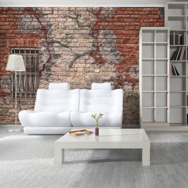 Fototapeta - Break the wall (200x154 cm)