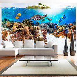 Fototapeta - Rafa koralowa (300x210 cm)