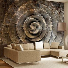 Fototapeta - Róża pustyni (300x210 cm)