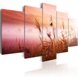 Obraz - Łąka witająca nowy dzień (100x50 cm)
