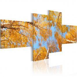 Obraz - Jesień w oczach krasnala (100x45 cm)