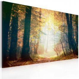 Obraz - Piękno jesieni (60x40 cm)