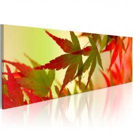 Obraz - Dotyk jesieni (120x40 cm)