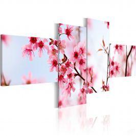 Obraz - Piękno kwiatów wiśni (100x45 cm)