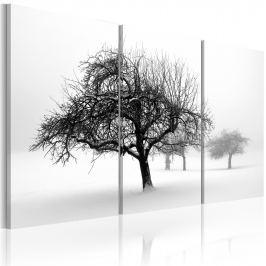 Obraz - Drzewa zanurzone w bieli (60x40 cm)