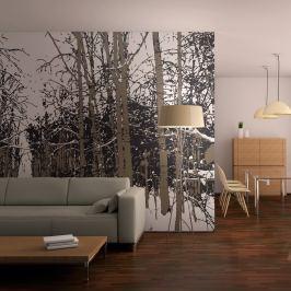 Fototapeta - drzewa - jesień (200x154 cm)
