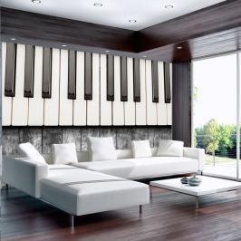 Fototapeta - Zainspirowane Chopinem - szare drewno (300x210 cm)