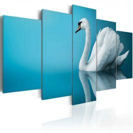 Obraz - Łabędź w błękicie (100x50 cm)