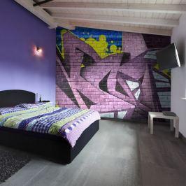 Fototapeta - Street art - graffiti (200x154 cm)