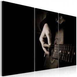 Obraz - Gitarzysta (60x40 cm)