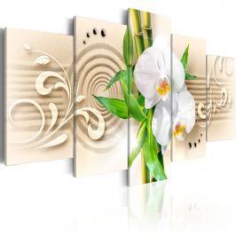 Obraz - Orchidee, babmbus i zen (100x50 cm)