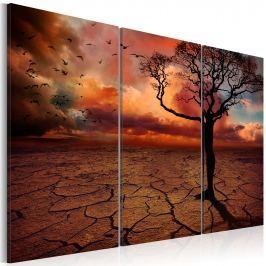 Obraz - Samotnia (60x40 cm)