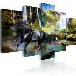 Obraz - Czarny rumak na tle rajskiego wodospadu (100x50 cm)
