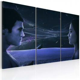 Obraz - Magnetyczne spojrzenie - tryptyk (60x40 cm)