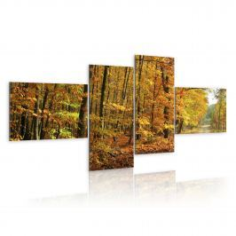 Obraz - Jesienna alejka pełna słońca (100x45 cm)