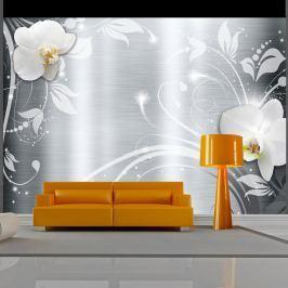 Fototapeta - Orchidee na stali (300x210 cm)